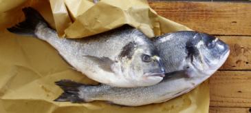 Ganze Fische zubereiten | Kochkurs Hamburg